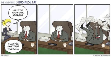 Πως θα ήταν αν είχες μια γάτα για προϊστάμενο στη δουλειά σου;