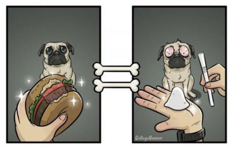 Το CollegeHumor μας παρουσιάζει πως φαίνεται ο κόσμος από τα μάτια ενός σκύλου
