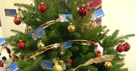 ΣΚΛΗΡΕΣ ΕΙΚΟΝΕΣ: Αυτό το κακόμοιρο χριστουγεννιάτικο δεντράκι έχει πιάσει Άδωνι Γεωργιάδη (PHOTO)