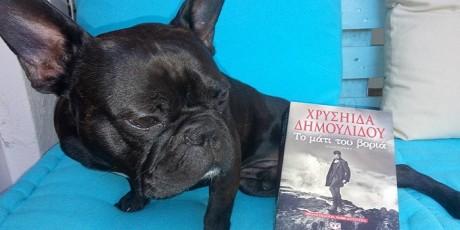 Ό,τι πιο γλυκό είδαμε σήμερα: Ζώα αναγνώστες ποζάρουν με βιβλία της Χρυσηίδας Δημουλίδου (PHOTO)