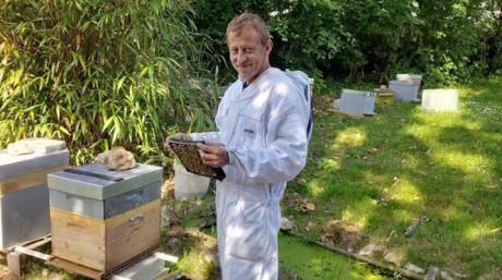 Γάλλος μελισσοκόμος εκπαίδευσε μέλισσες να φτιάχνουν μέλι από χασισόδεντρα (VIDEO)
