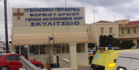 """Πιτ Μπουλ τραυματίζει γυναίκες στη Χίο, νοσηλεύονται στο """"Σκυλίτσειο Νοσοκομείο"""", όλα πάνε καλά"""