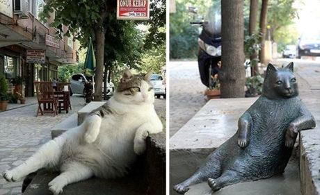 Αυτή η γάτα ήταν τόσο αραχτή που μόλις πέθανε της έφτιαξαν άγαλμα (PHOTO)