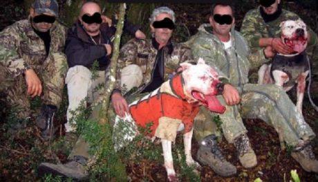 Δικάζονται σήμερα οι κυνηγοί που έστηναν παράνομους αγώνες ικανοτήτων σκύλων στα Ιωάννινα (PHOTO)