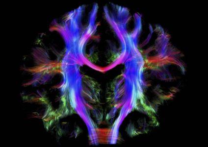 Οι θρησκευτικές πεποιθήσεις επιδρούν στον εγκέφαλο όπως το σεξ, η μάσα και τα ντρόγκια, σύμφωνα με έρευνα