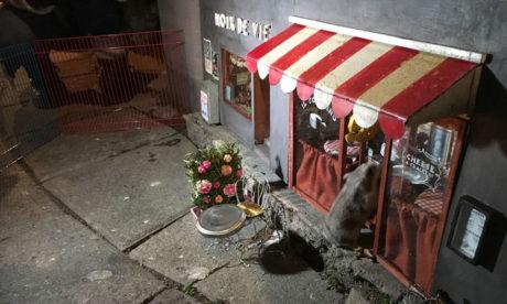 Στο Μάλμε της Σουηδίας άνοιξαν μικρά καταστήματα για ποντικούς, γιατί κάτι τέτοιο έλειπε από την πόλη (PHOTOS)