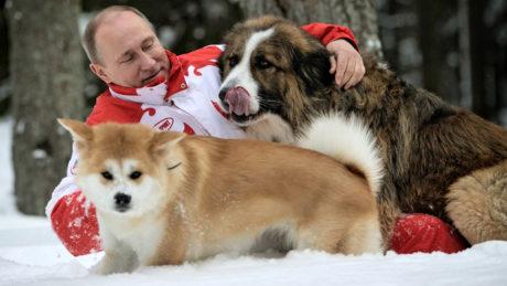 БАДАСС: Ο Βλαντιμίρ Πούτιν αρνήθηκε κουτάβι που του κανε δώρο η κυβέρνηση της Ιαπωνίας