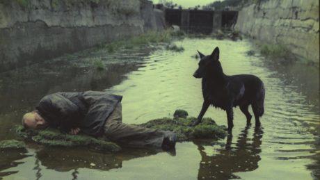 Κυκλοφόρησε το trailer της βελτιωμένης ψηφιακής επανέκδοσης του επικού «Stalker» του Αντρέι Ταρκόφσκι (VIDEO)