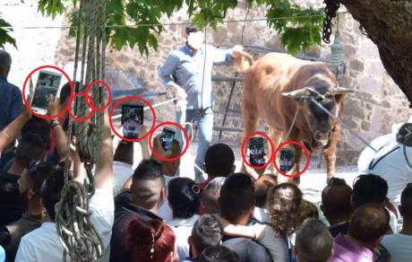 Χριστιανοί στη Λέσβο βασάνισαν και έσφαξαν παράνομα έναν ταύρο για να τιμήσουν τον Ταξιάρχη Μιχαήλ