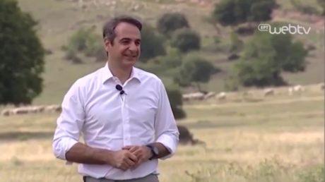 Αν δεν γίνω πρωθυπουργός, plan B: πρόβατα