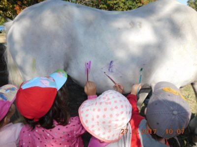 Παιδιά βάφουν ένα άλογο σε εκδρομή στη Θεσσαλονίκη και το ίντερνετ παθαίνει παροξυσμό
