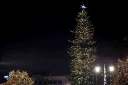 Τρίκαλα: Εθεάθη γιγάντιο χριστουγεννιάτικο δέντρο που θα ζήλευε και ο Αβραμόπουλος