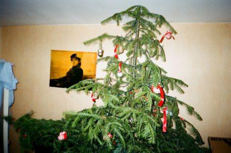 Πελάτισσα ζητά τα λεφτά της πίσω επειδή της πούλησαν «νεκρό» χριστουγεννιάτικο δέντρο