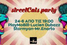 To Αμοργιανό το Μπαρ κάνει πάρτι με τις γάτες του