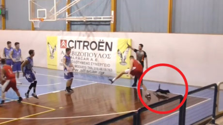 Γάτα μπουκάρει σε αγώνα μπάσκετ, την πατάει παίχτης – χορεύει breakdance